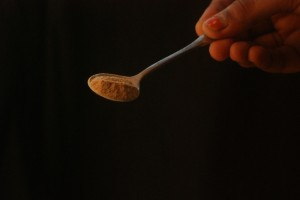 Palm sugar spoon-1